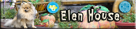 питомник породы померанский шпиц Elenhouse